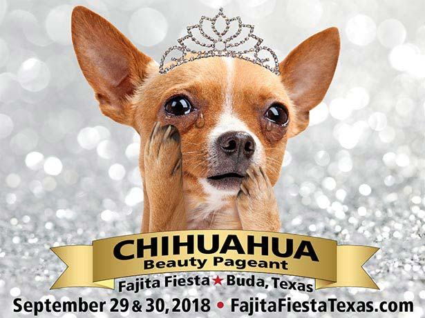 Chihuahua Pageant | Buda Area Chamber of Commerce
